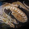 Кожаный кошелек китайский дракон фото